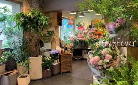 Hay Fever Floral & Gifts